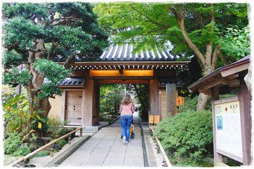 鎌倉1DSC01576