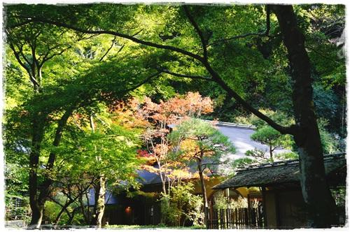 鎌倉2日目①DSC01704