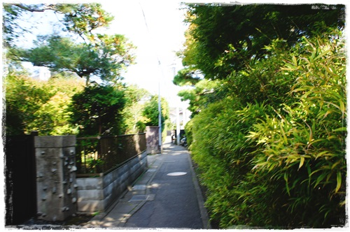 鎌倉2日目①DSC01724