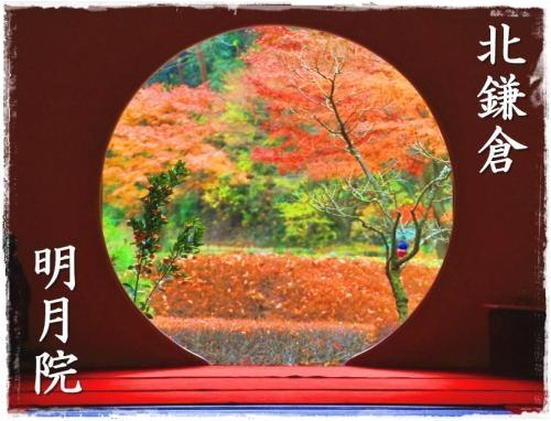 鎌倉2日目①500_10839366