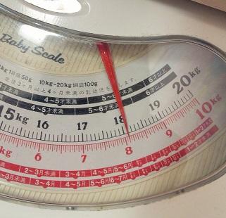 生後7カ月 体重測定4