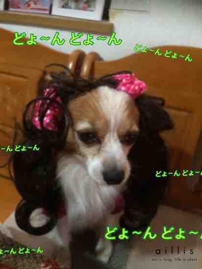 fc2blog_20160113200212b09.jpg