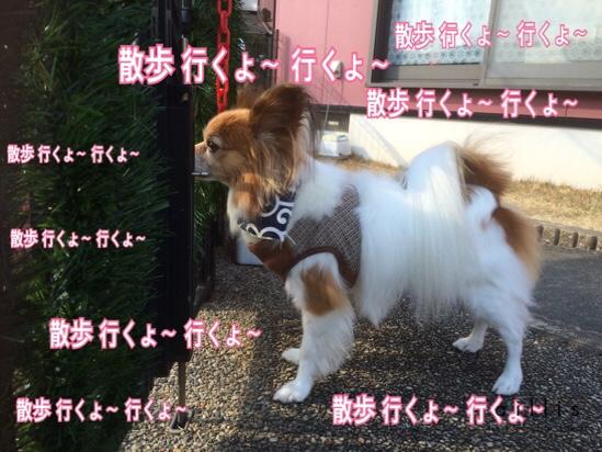 fc2blog_20160114203620a46.jpg