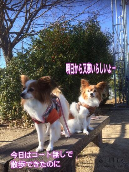 fc2blog_20160122203704367.jpg