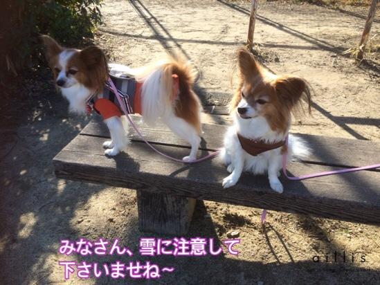 fc2blog_20160122203758c4f.jpg