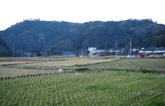 1辺田見山87