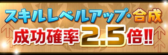 skill_seikou2_5x_20160209162144432.jpg