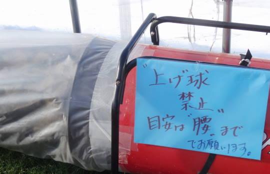安平早来 佐藤農園室内PG 2016初春 (4)