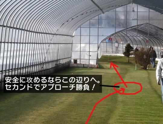 安平早来 佐藤農園室内PG 2016初春 (7)