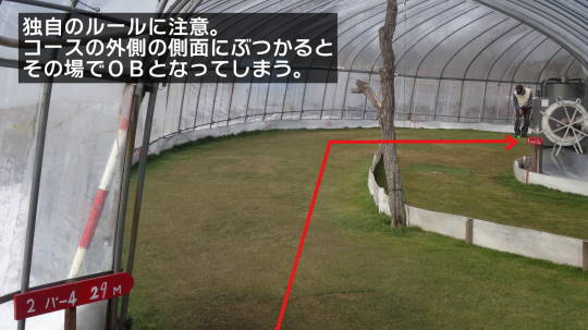 安平早来 佐藤農園室内PG 2016初春 (11)