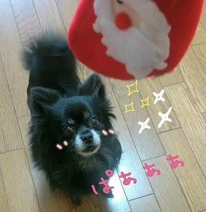 2015-12-23_16_40808.jpg