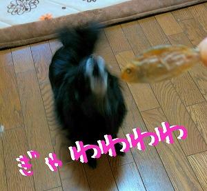 2015-12-23_16_40816.jpg