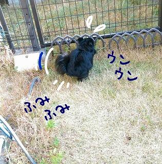 2016-01-13_23_42051.jpg