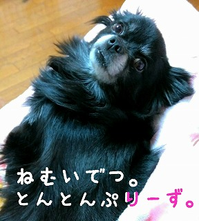 2016-02-11_18_43492.jpg
