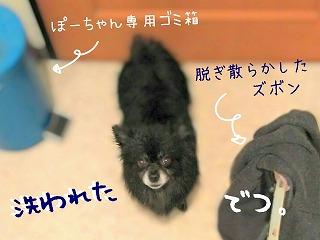 2016-02-14_15_43705.jpg