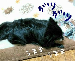 2016-02-14_15_43708.jpg
