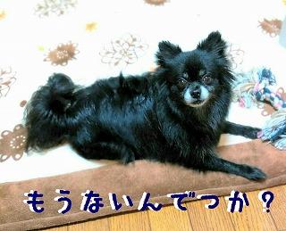 2016-02-14_15_43710.jpg