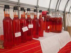 [写真]いちご酢の試作ボトルが並んでいる様子