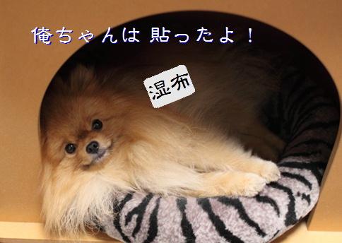 blog20151217-1.jpg