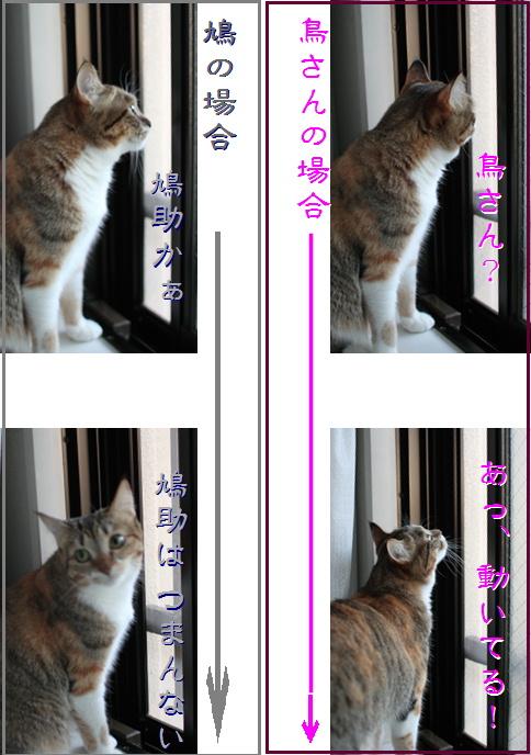 blog20151220-4b.jpg
