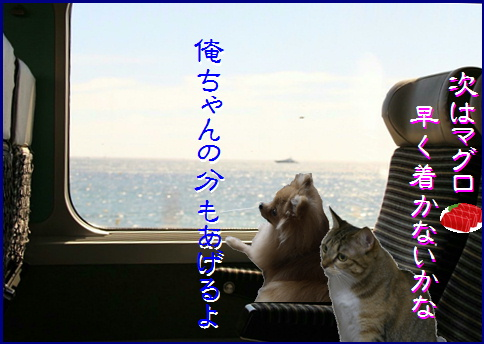 blog20160116-5.jpg
