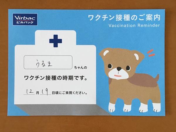 ワクチン接種のお知らせ