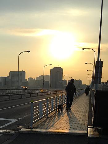 夕日とうるまと父