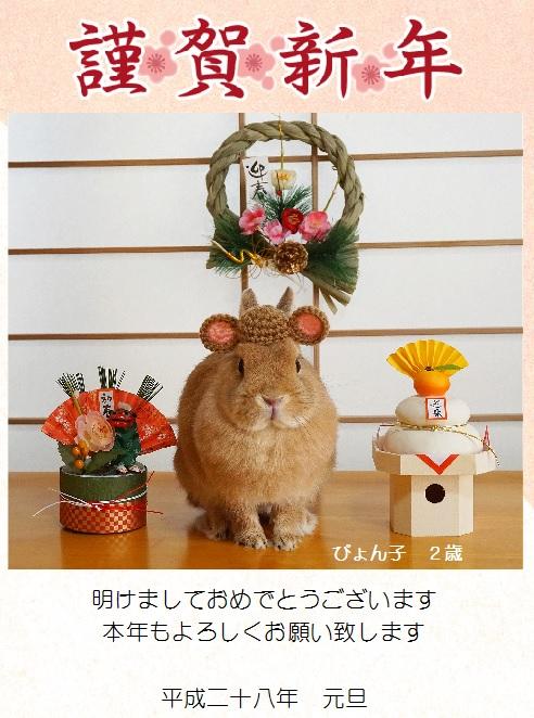 ぴょん子160101_01