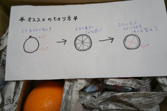 ぴょん子151229_03