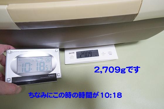 ぴょん子160203_00