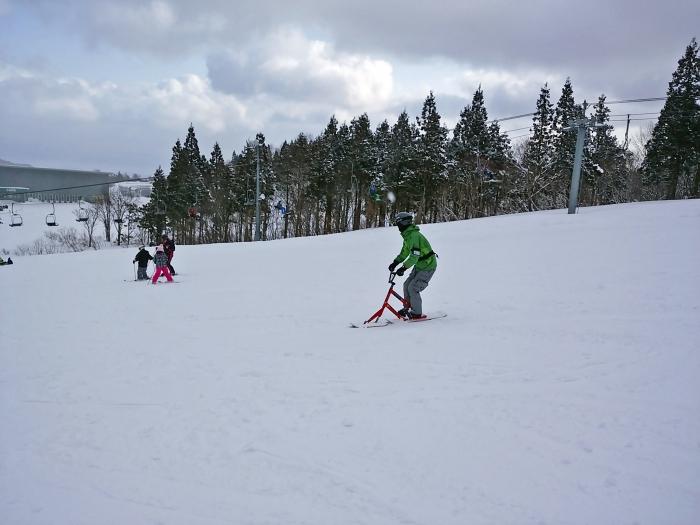 SNOWSCOOT (19)