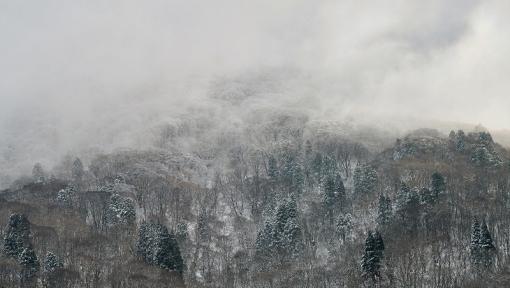 3107臥竜山15121910