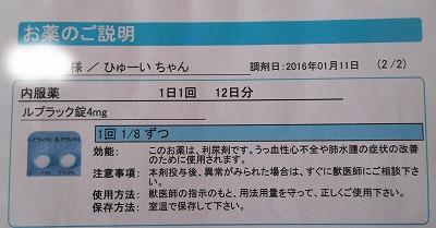 2016-01-11-33.jpg