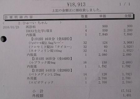 2016-01-23-03.jpg
