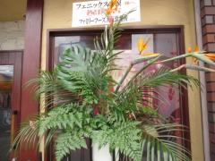 【新店】フェニックスの涙-3