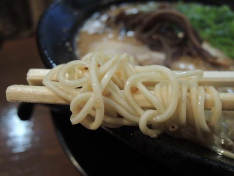 濃香とんこつ(しお)の麺