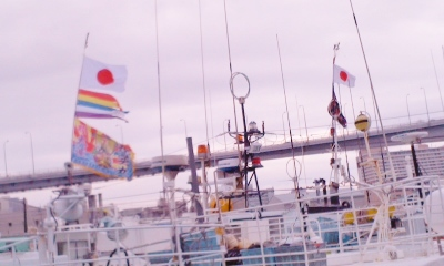 泊港大漁旗