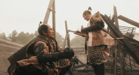 「火傷にはふきの葉が効くのか」徳川家康