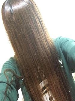 髪の毛1226
