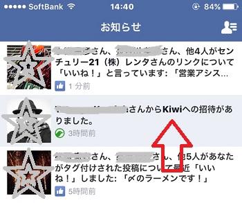 kiwi1223.jpg
