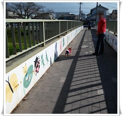 たまには違うところを散歩IMG00460-20151212