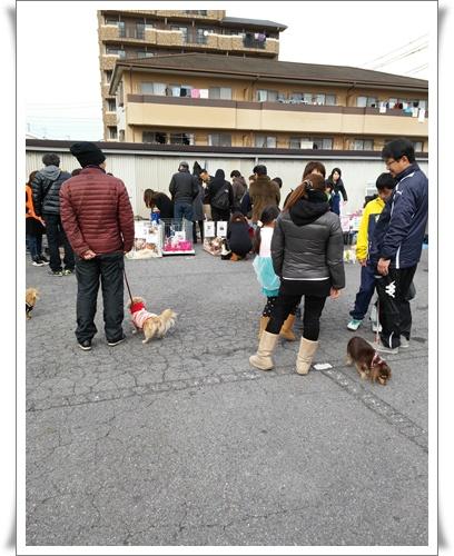 名古屋港IMG00108-20160117
