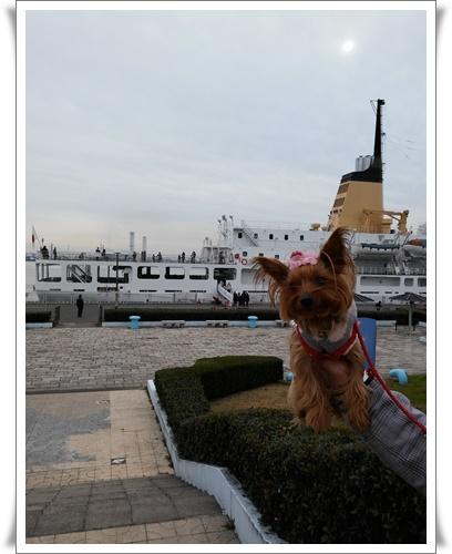 名古屋港IMG00112-20160117