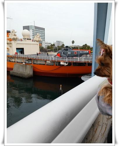 名古屋港IMG00131-20160117