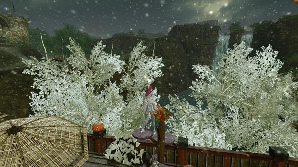 12月23日雪3