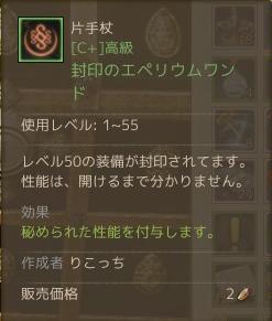 2月7日ワンド作り6