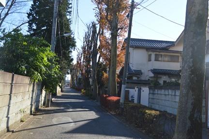 2015-12-19_38.jpg
