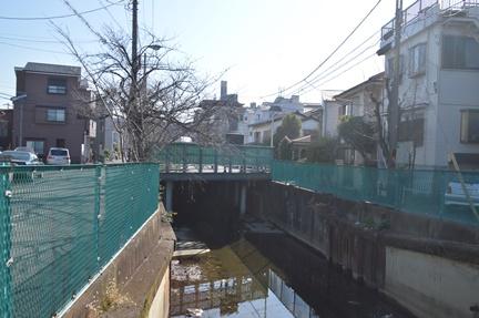 2016-01-04_31.jpg