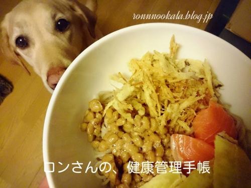 年越し蕎麦2015