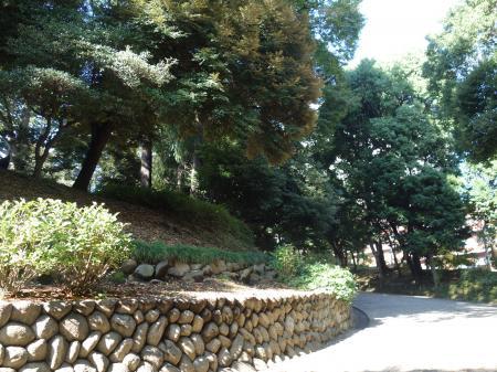 旧岩崎邸庭園 (2)